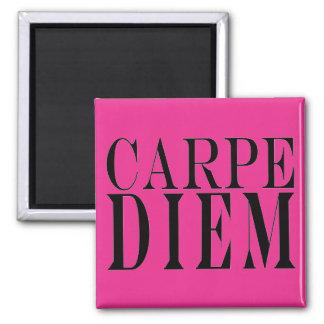 Carpe Diem saisissent le bonheur latin de citation Magnet Carré