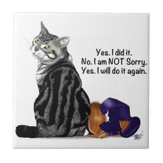Carreau Aucun chat de remords