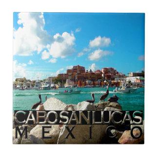 Carreau Cabo San Lucas