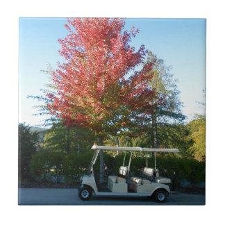 Carreau Chariot de golf de DSCN3942.JPG au grand canoë