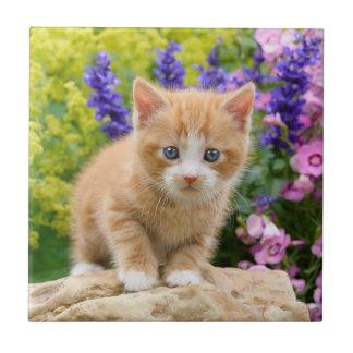 Carreau Chaton pelucheux mignon de chat de gingembre en