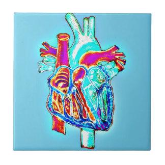 Carreau Coeur anatomique tiré par la main au néon