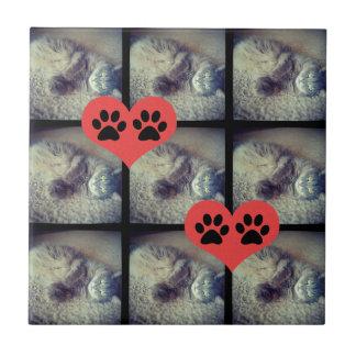 Carreau Collage de chat avec PawPrints par Shirley Taylor
