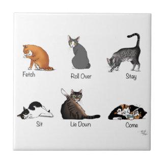 Carreau Commandes de chat