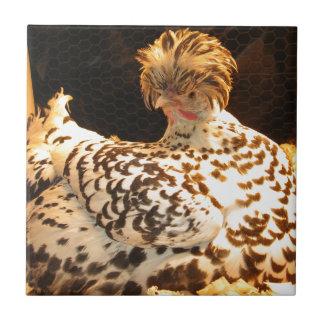 Carreau de céramique avec la poule de Spitzhauben