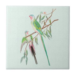 Carreau Carreau de céramique d'oiseaux de vert en pastel