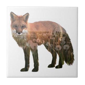 Carreau Double exposition de Fox