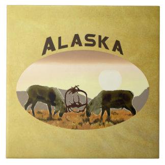 Carreau Duel de caribou - Alaska