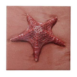 Carreau Étoiles de mer rouges