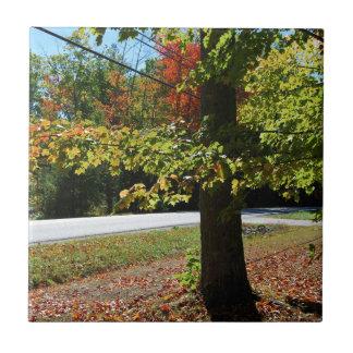 Carreau Feuille d'automne au Maine