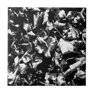 Carreau Feuille noir et blanc