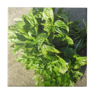 Carreau Groupe d'herbes fraîches