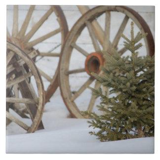 Carreau Hiver dans les roues et le pin de pays