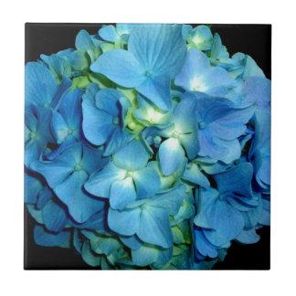 Carreau Hortensia bleu
