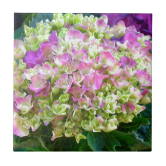 Carreau Hortensia de couleur de pistache