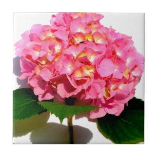 Carreau Hortensia rose