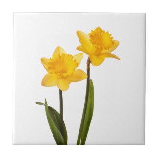 Carreau Jonquilles jaunes sur le blanc - blanc de fleur de