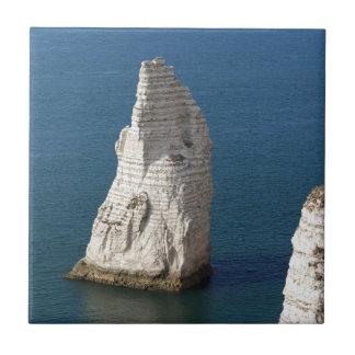 Carreau La côte aux falaises d'Aval d'Etretat