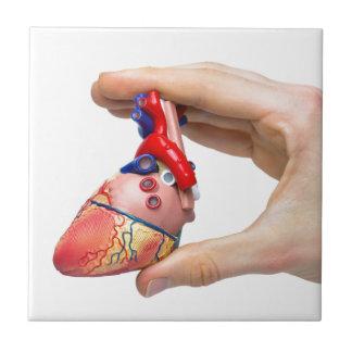Carreau La main tient le coeur humain modèle entre les