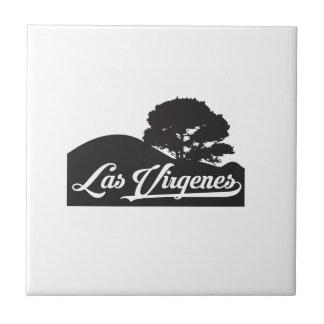 Carreau Las Virgenes - paysage