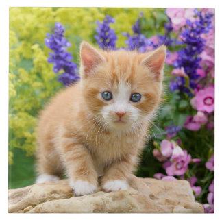 Carreau Le chaton pelucheux mignon de chat de gingembre