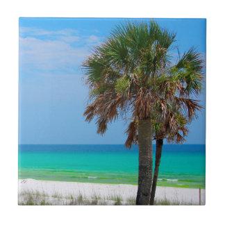 Carreau Les Etats-Unis, la Floride. Palmiers sur la côte