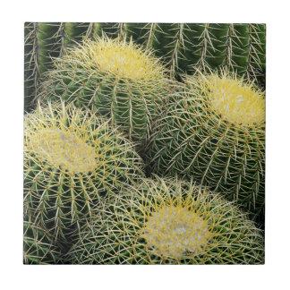 Carreau Motif de cactus