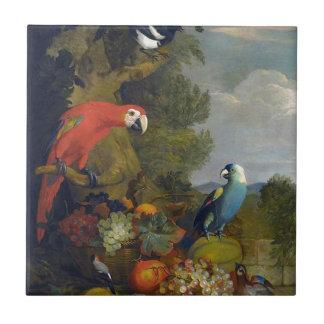 Carreau Nature de fruit d'animaux d'oiseaux d'aras de
