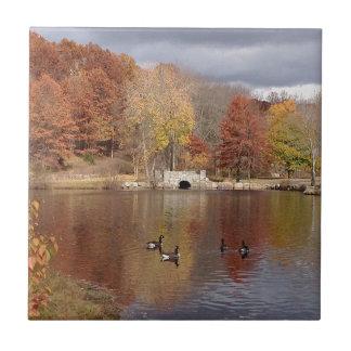 Carreau Oies dans des couleurs reflétées d'automne -