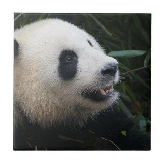 Carreau Panda géant dans la forêt en bambou