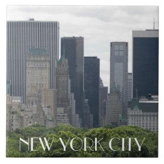Carreau Photo de New York City
