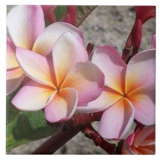 Carreau Photographie florale de jardin de fleurs
