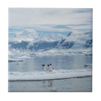 Carreau Pingouins sur un iceberg