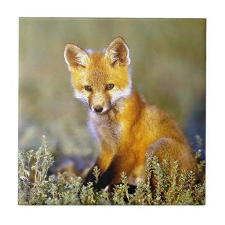 Carreau renard rouge de petit bébé mignon