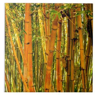 Carreau Tuile en céramique en bambou de l'art 6 x 6