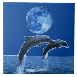 Carreau Tuiles de dauphin