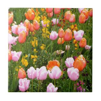 Carreau Un champ des tulipes à Amsterdam