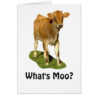 Carte 1607513, ce qui est MOO ?