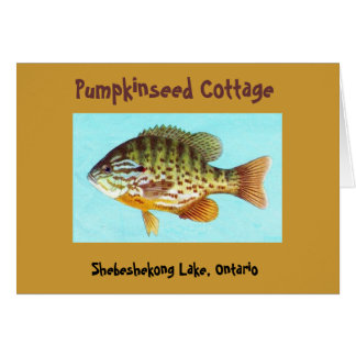 Carte 1 de cottage de Pumpkinseed