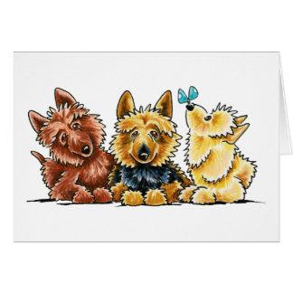 Carte 3 terriers australiens