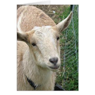 Carte A obtenu votre chèvre 2