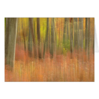 Carte Abrégé sur en bois d'automne