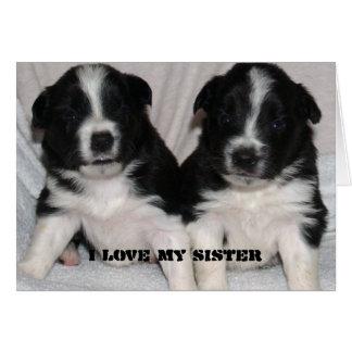 Carte aimez ma soeur, puppys mignons