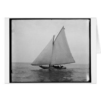 Carte Alpha yacht 1892 de navigation