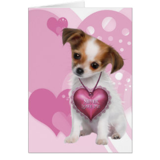 Carte Amour de chiot de chiwawa Valentine