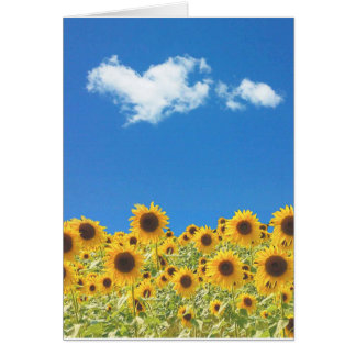 Carte Amour de tournesol