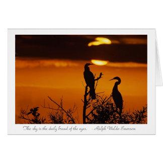 Carte Anhingas au lever de soleil