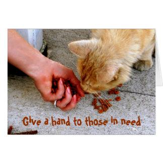 Carte Animaux familiers égarés d'abri d'Hawaï de chat