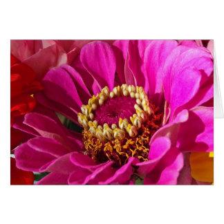 Carte Anniversaire pour la grand-maman, fleur rose de