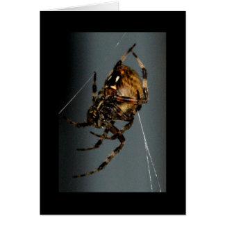 Carte Araignée